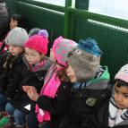 EYFS Trip to Stockley Farm