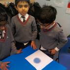 Year 2 Science Topic Work