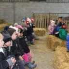 Early Years' Trip to Stockley Farm