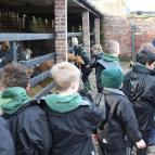 Year 3 Trip to Tatton