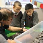 Year 3 Rock & Fossil Workshop