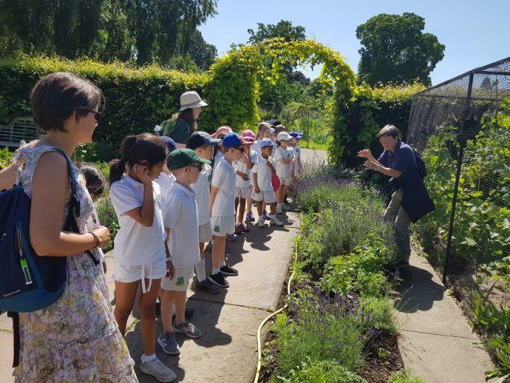 Year 1 & 2 Visit Ness Gardens