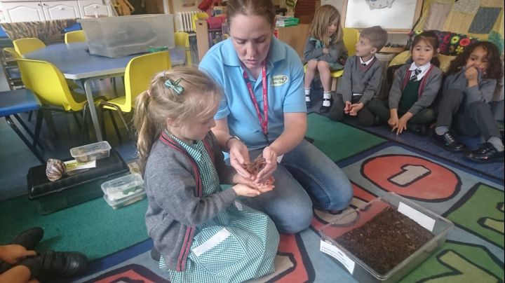 Reception Enjoy a Minibeast Workshop