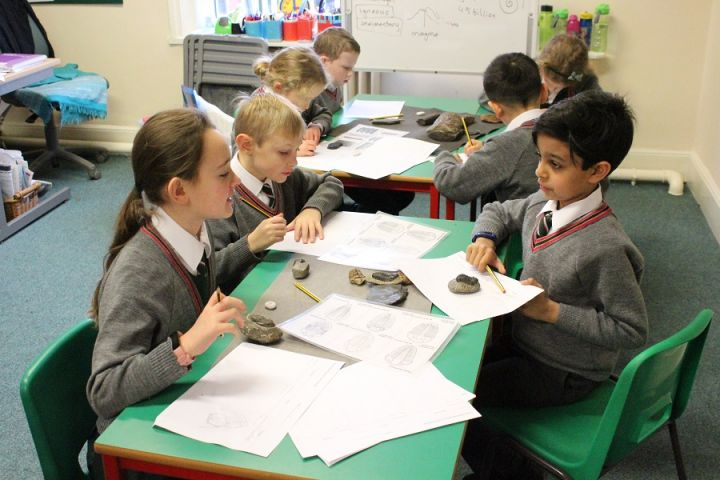 Year 3 Explore Rocks and Fossils