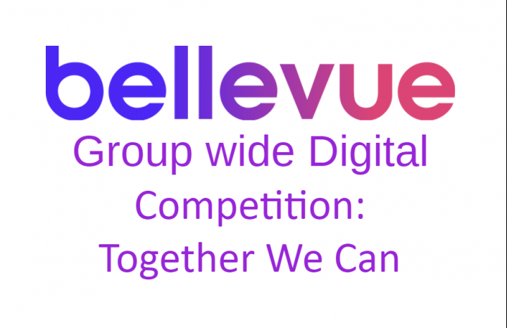 Bellevue Digital Competition